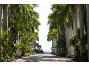 Paved Boulevard to Siesta Key Beach